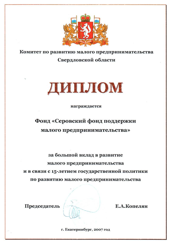 Достижения Диплом за большой вклад в развитие малого предпринимательства